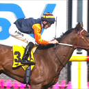 Moonee Valley double for All American