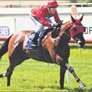Bolord on track in Victoria