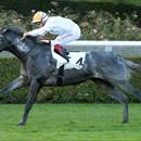 Geisel Park signs French 2YO Group 1 winner Vert De Grece